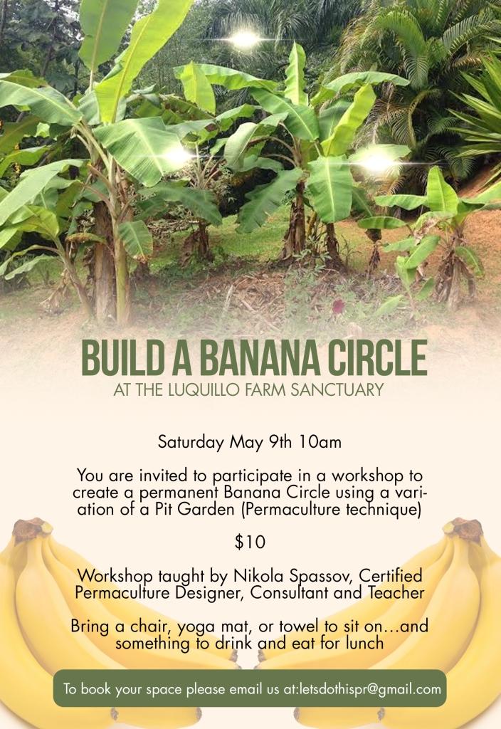 banana circle english