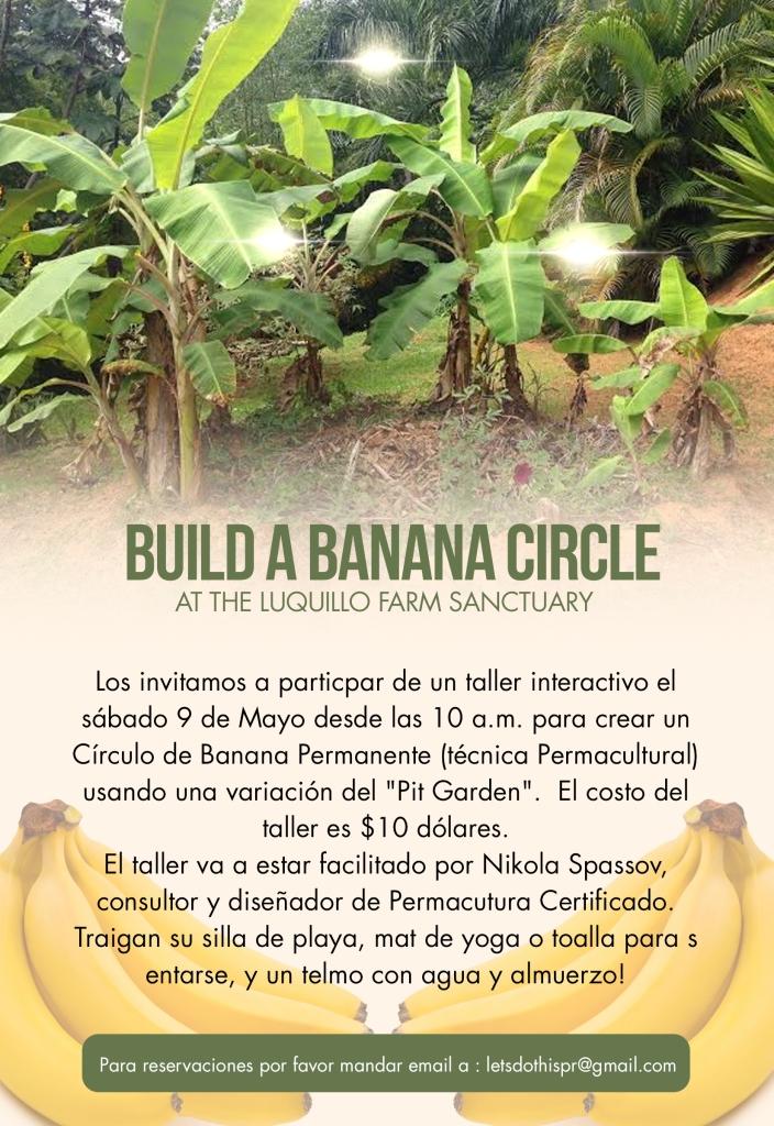 banana circle spanish